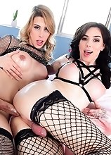 Two busty, beautiful TS glamour girls, brunette goddess Annabelle Lane and tall blonde Casey Kisses, look glamorous in skimpy lingerie and black fishn